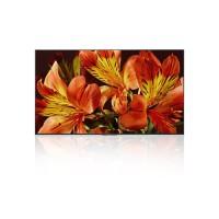 Bildschirm Sony LED TV 85 – 4K Ultra HD